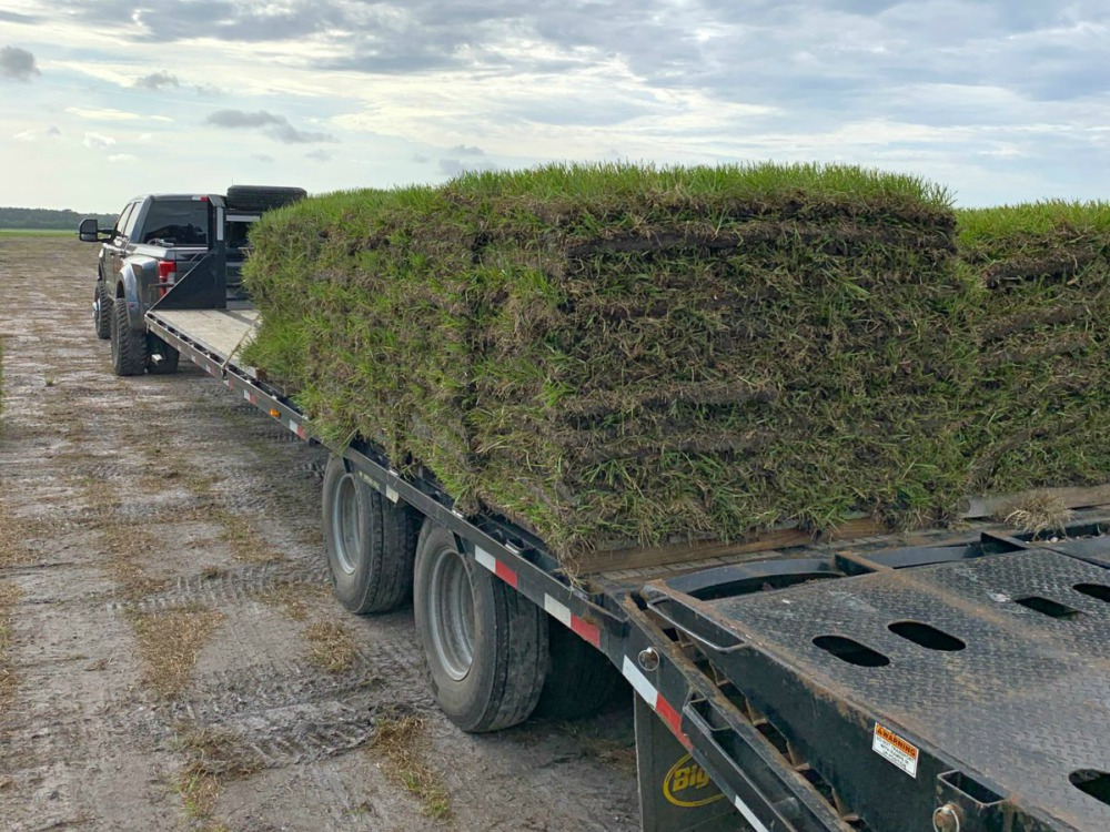 Sod farm, land clearing, sustainable agriculture, site development, sod installation | Grovin Farms, Florida.