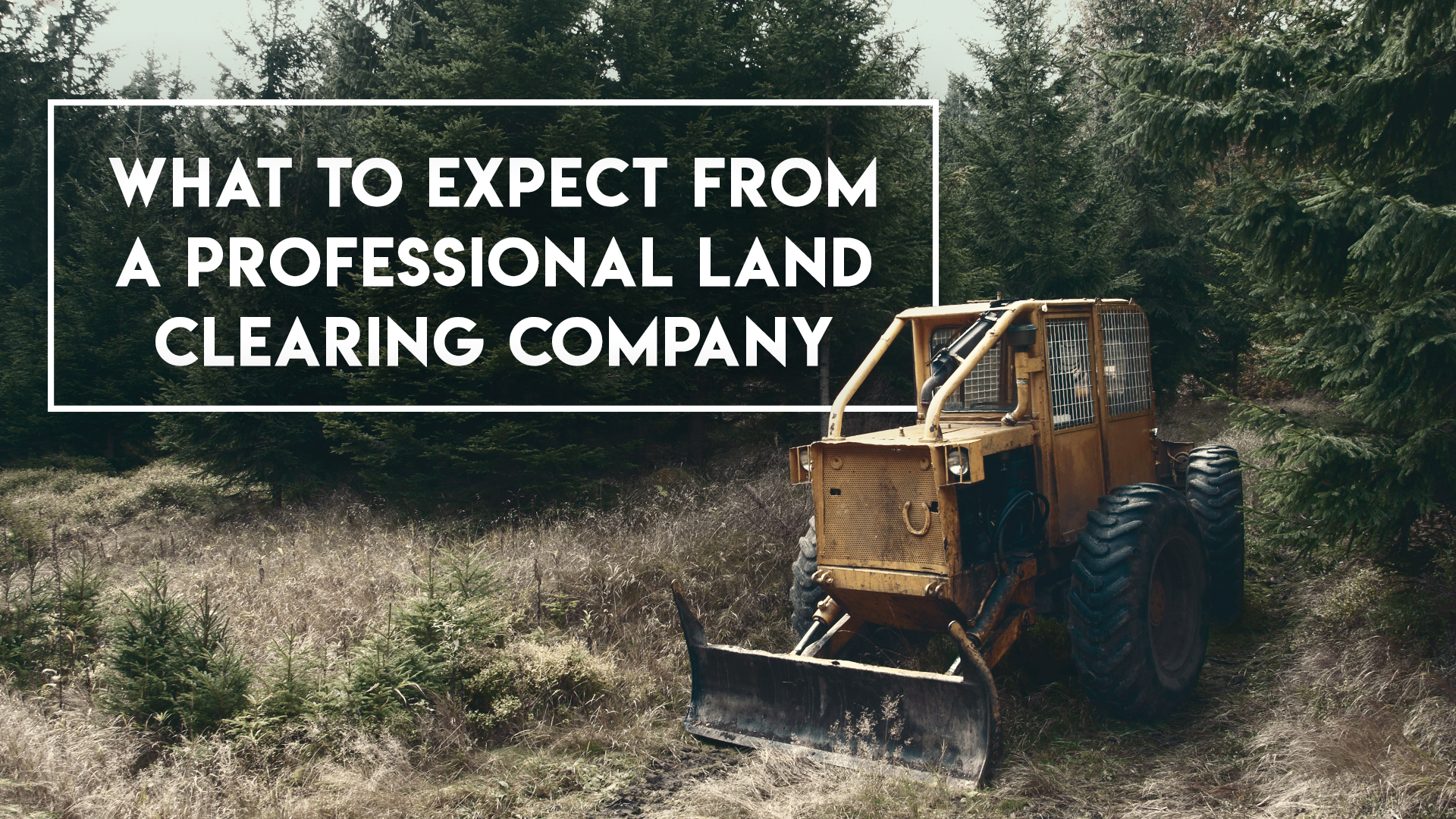 Land clearing, Ground Clearing, site development, Steelwrist Equipment, lot clearing near me | Grovin Farms, FL