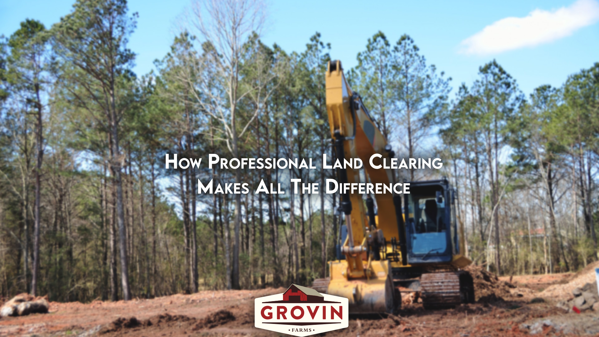 Professional Lot clearing company, land clearing in florida, lot clearing near me, sod farm, sod provider