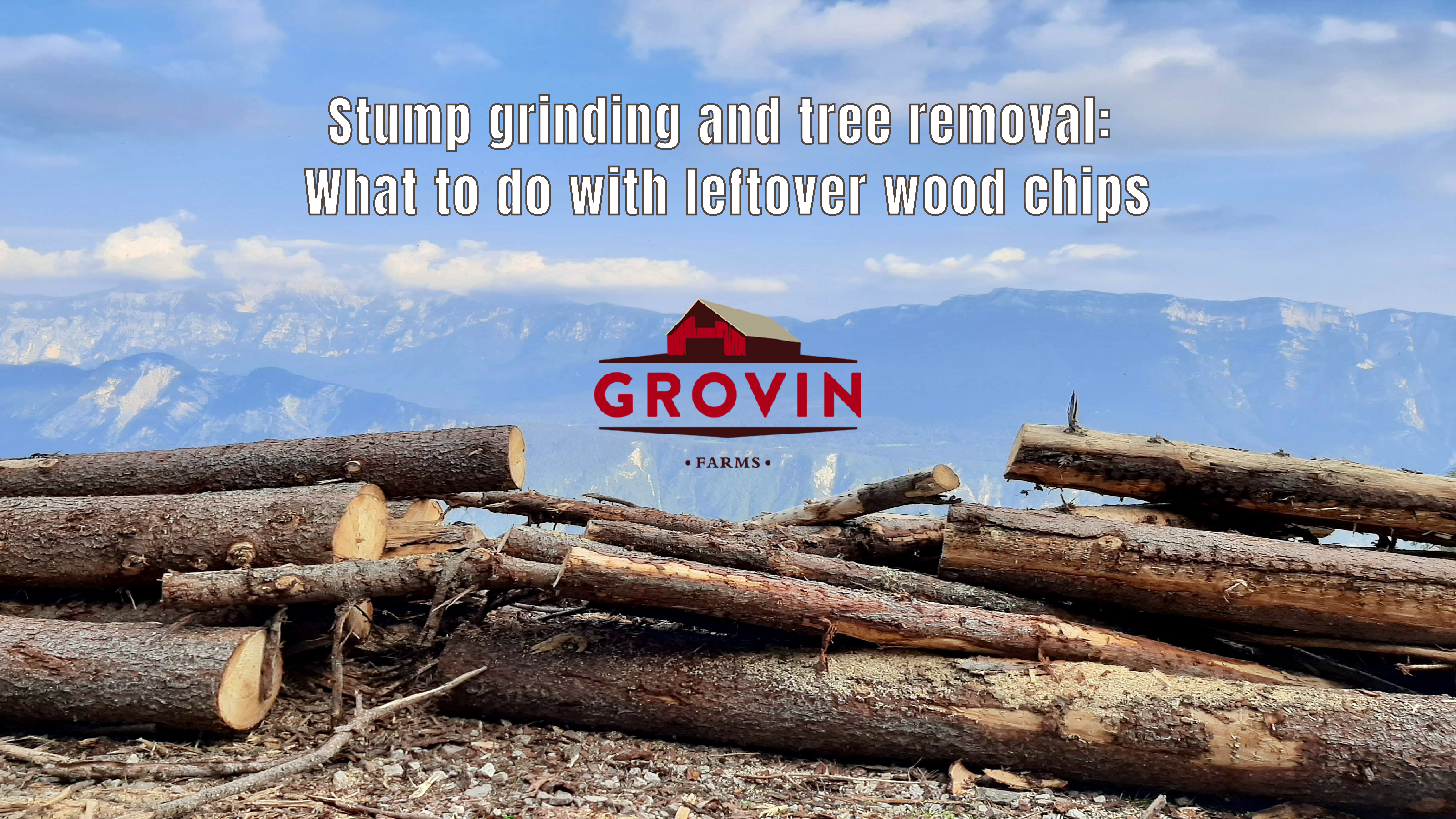 Stump Grinding and Tree Removal | Grovin Farms
